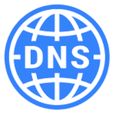 Picture for category DNS Services